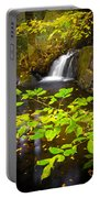 Silent Brook Portable Battery Charger