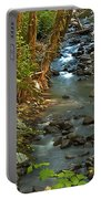 Silky Stream In Rain Forest Landscape Art Prints Portable Battery Charger