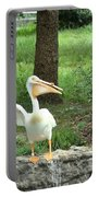 Silly Bird Portable Battery Charger