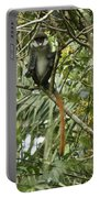 Silly Red-tailed Monkey Portable Battery Charger