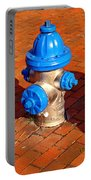 Silver And Blue Hydrant Portable Battery Charger