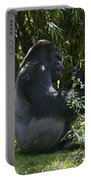 Silver Back Gorilla Portable Battery Charger
