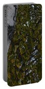 Silver Birch Portable Battery Charger