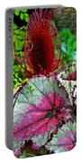 Silver Edged Rex Begonia Plant Art Prints Portable Battery Charger