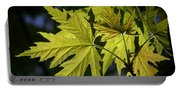 Silver Maple Portable Battery Charger