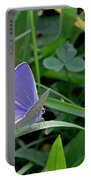 Silver Studded Blue Butterfly Portable Battery Charger