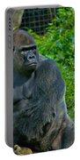 Silverback Gorilla  Portable Battery Charger