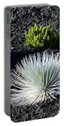 Silversword Plant Portable Battery Charger