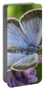 Silvery Blue Butterfly Portable Battery Charger