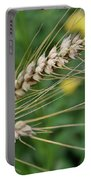 Simply Dried Grass Portable Battery Charger