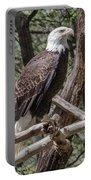 Single Bald Eagle Portable Battery Charger