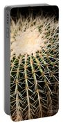 Single Cactus Ball Portable Battery Charger