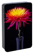 Single Spider Mum Portable Battery Charger