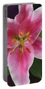 Single Stargazer Lily Portable Battery Charger