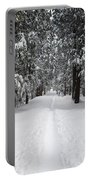 Single Track Cross Country Skiing Trail Yosemite National Park Portable Battery Charger