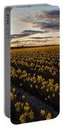 Skagit Daffodils Sunset Sunstar Portable Battery Charger