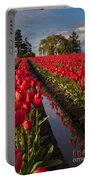 Skagit Glorious Day Portable Battery Charger