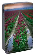 Skagit Valley Tulips Portable Battery Charger