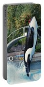 Skana Orca Vancouver Aquarium 1974 Portable Battery Charger
