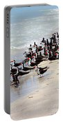 Skimmers On The Beach Portable Battery Charger by Carol Groenen