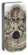 Skull Inferior View Portable Battery Charger