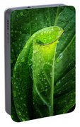 Skunk Cabbage Portable Battery Charger