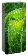 Skunk Cabbage Square Portable Battery Charger