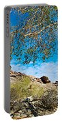 Slanted Rocks And Sycamore Tree  In Andreas Canyon In Indian Canyons-ca Portable Battery Charger