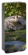 Sleeping Beauty Portable Battery Charger