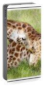 Sleeping Giraffe Portable Battery Charger