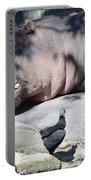 Sleeping Hippo Portable Battery Charger