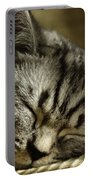 Sleeping Pet Portable Battery Charger