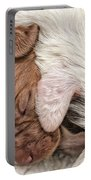 Sleeping Puppies Portable Battery Charger