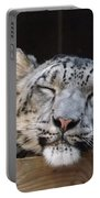 Sleeping Snow Leopard Portable Battery Charger