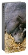 Sleeping Sow Portable Battery Charger