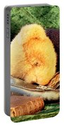 Sleeping Teddy Portable Battery Charger