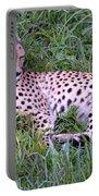 Sleepy Cheetah Portable Battery Charger
