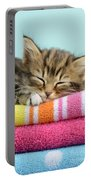 Sleepy Kitten Portable Battery Charger