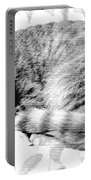 Sleepy Kitty Portable Battery Charger
