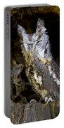 Sleepy Screech Owl Portable Battery Charger