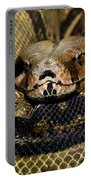 Sleepy Snake Portable Battery Charger