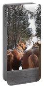 Sleigh Ride Dwn A Snowy Lane Portable Battery Charger