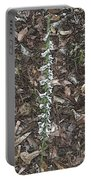 Slender Ladies Tresses Orchids Portable Battery Charger