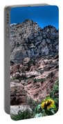 Slide Rock Canyon Portable Battery Charger