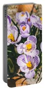 Small Crocus Flower Field Portable Battery Charger