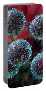 Small Lymphocytes Portable Battery Charger