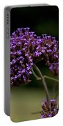 Small Purple Flowers On A Verbena Plant Portable Battery Charger