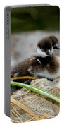 Smew Ducklings On Shore Portable Battery Charger