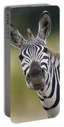 Smiling Burchells Zebra Portable Battery Charger