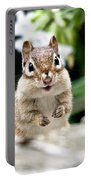 Smiling Chipmunk Portable Battery Charger